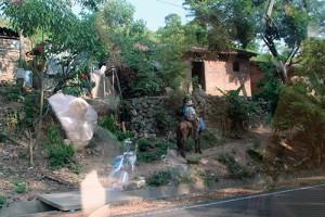 Un niño se dirige a su vivienda en San Isidro, tras su jornada agrícola.